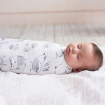 Aden and Anais - lovebird 4 PACK CLASSIC SWADDLE - Artock Australia