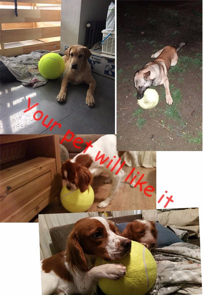 Giant Inflatable Tennis Ball For Playful Dogs! Must Have!-GearGifts.com