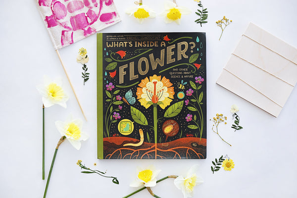 'What's Inside a Flower' Deluxe Kit