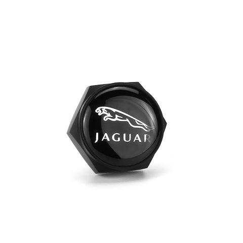 Jaguar Black License Plate Bolts - MyValveCaps