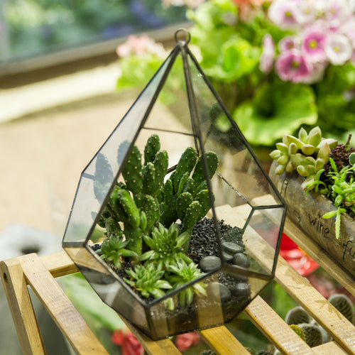 Diamond Shape Succulent Terrarium Flower Pot with a Loop