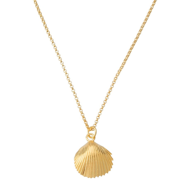 Salty Shell Necklace STERLING SILVER & 18K GOLD