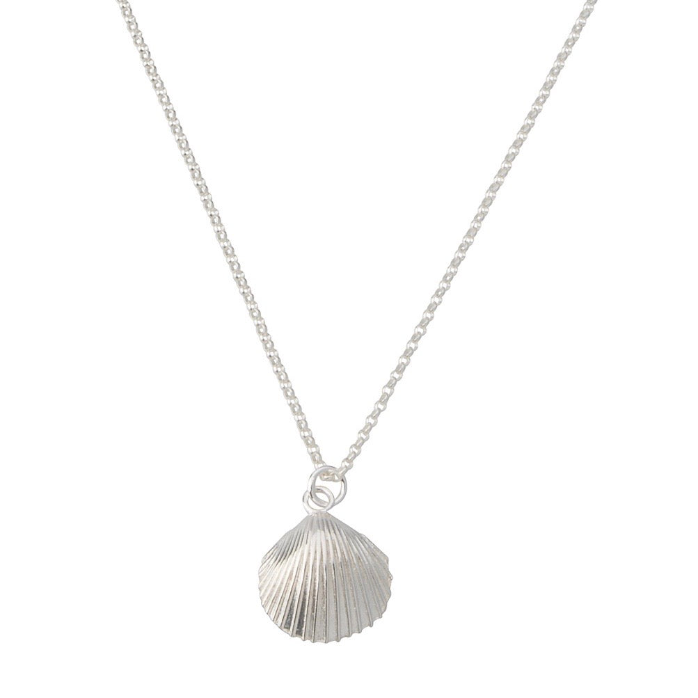 Salty Shell Necklace