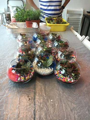 Terrarium workshops - self building and team building workshops -