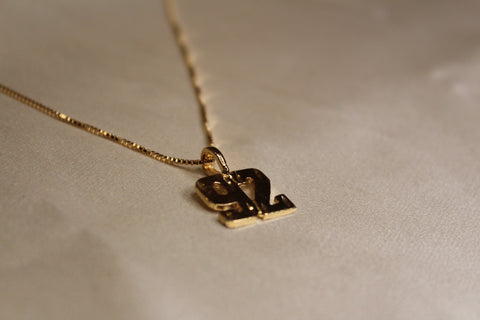 Year Necklace (Box Chain)
