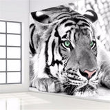 DIY 3D Wall Murals Tiger Black and White