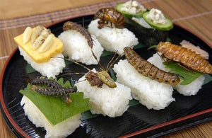 Edible insects sushi