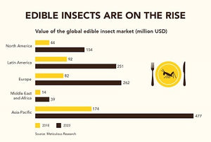 Edible insects market growth