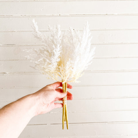 Ivory Pampas Grass Bundle