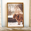ELISE MEADER FRAMED NATURAL CANVAS HIGHLAND COW PRINT S5