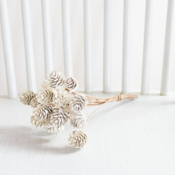 White Washed Mini Pine Cone Stem Bundle