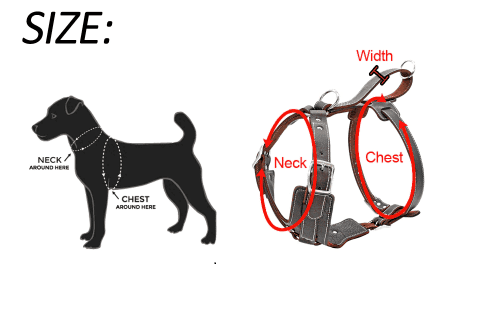 size chart measure you dog for his leather harness
