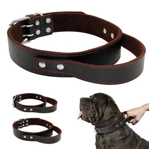 hand grip leather dog collar, mastiff leather collar, mastiff hand grip leather collar, hand controller dog collar,highly durable leather dog collars,Safety Collars with Grip Handles for mastiff dogs, bull mastiff, Neapolitan dog