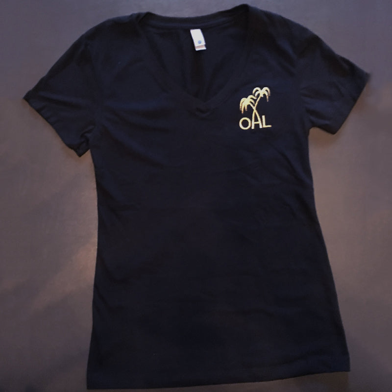 Black V-Neck T-Shirts - Fitted