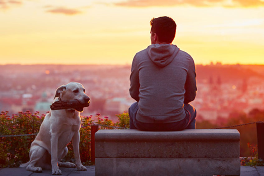 5 Dog-Friendly Cities in Europe