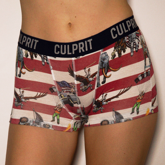 Load image into Gallery viewer, Women's Bootyshort: Team America