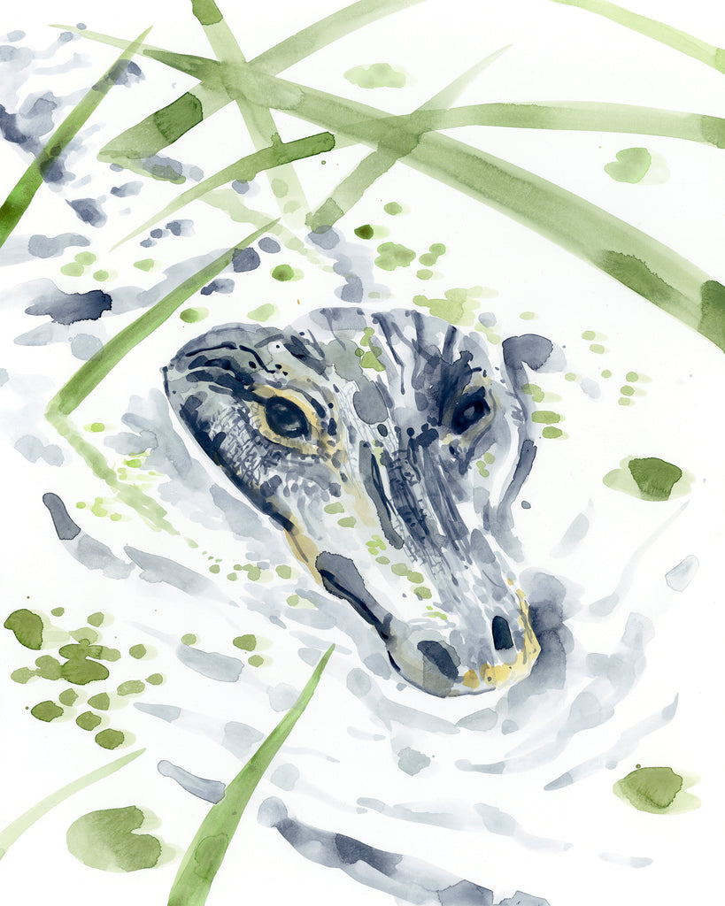 Alligator in the Swamp print