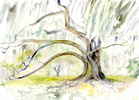 City Park Oaks watercolor print