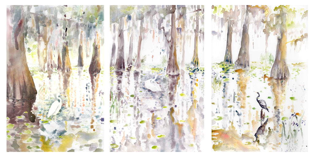 Louisiana Cypress Triptych