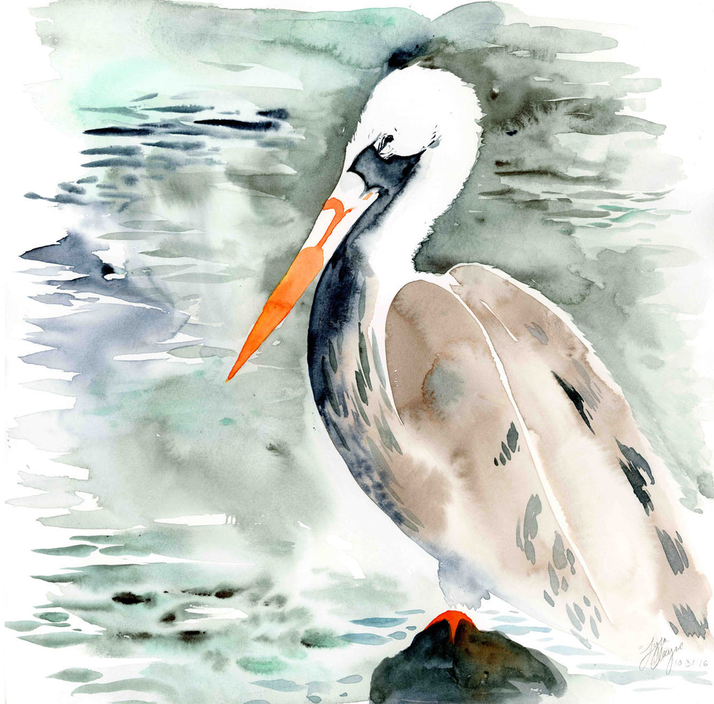 Pelican watercolor print