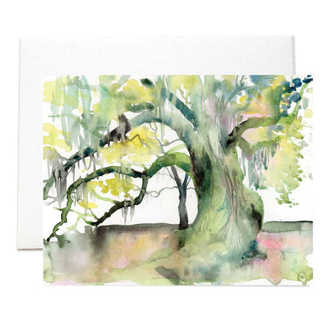 New Orleans Swamp Wildlife & Nature Folded Notecards