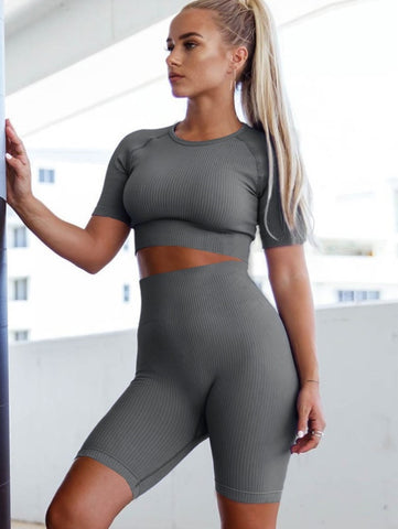 Summer Sheer Fitness Yoga Two Piece Short Set