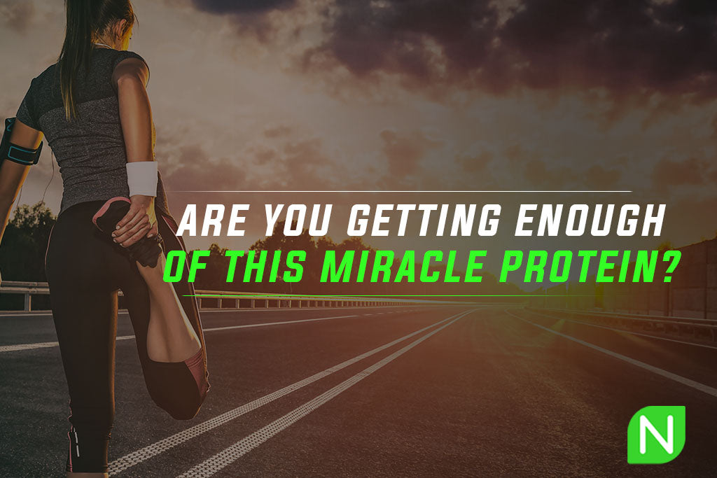 Are you getting enough of this miracle protein?