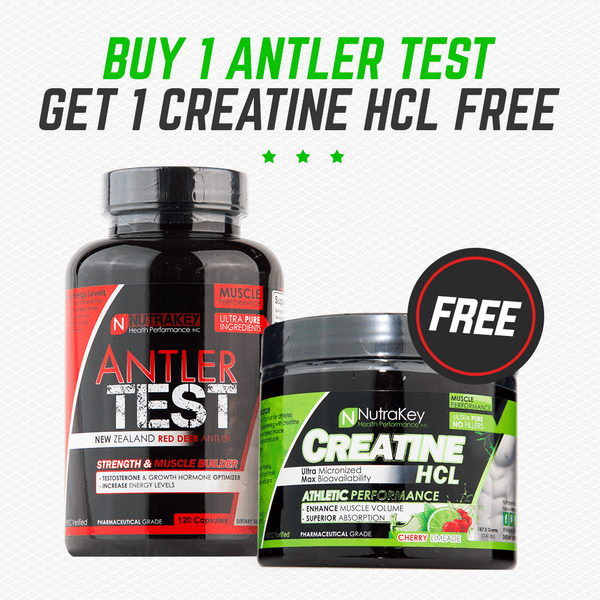 Antler Test & Creatine HCL Clearance Bogo