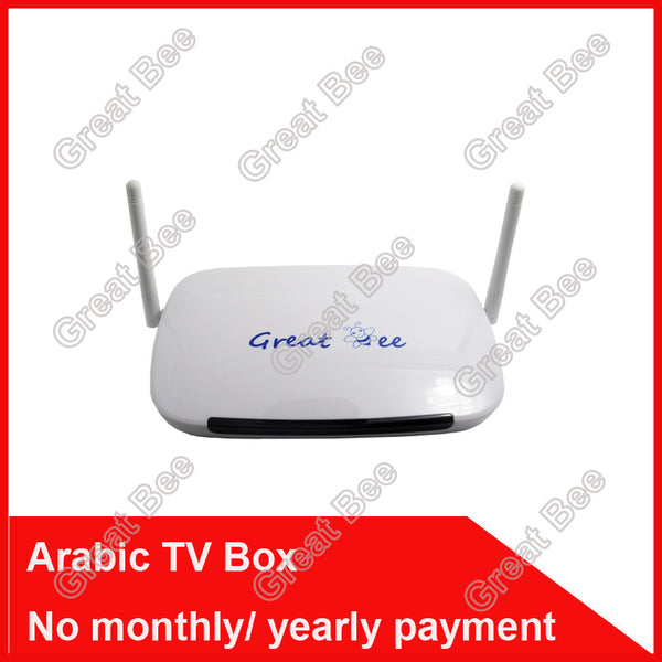 2017 cheapest Arabic IPTV box,Great Bee arabic channels ,free shipping no monthly fee iptv arabic box support 400+ channels