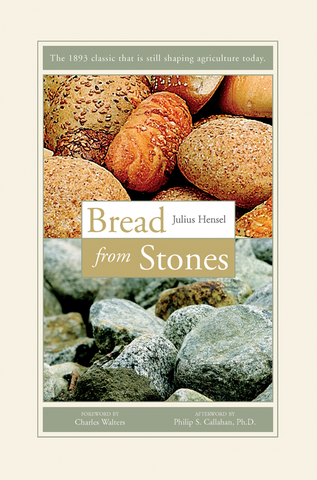 Front cover image of the book Bread From Stones