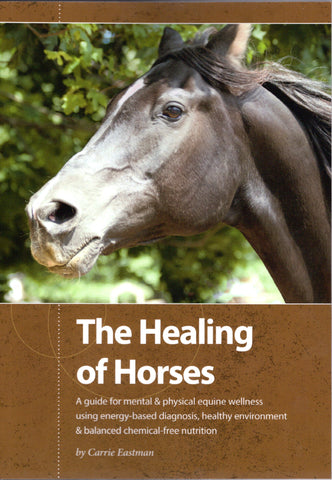 The Healing of Horses