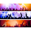 ROCK CONCERT - Backdrop Inserts for CLASSIC Display Geek Shelves (Limited Edition) - Display Geek