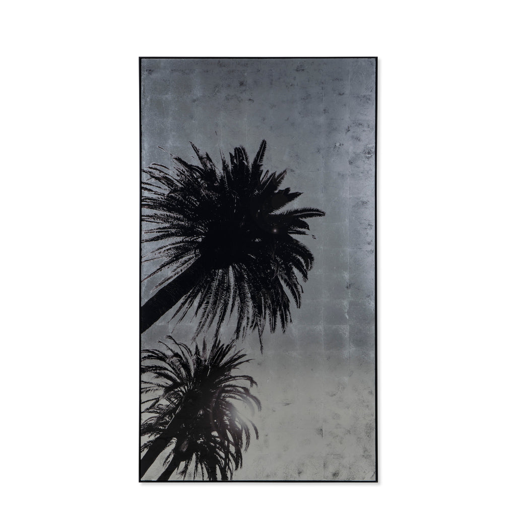 Silver Leaf Palm Tree - C
