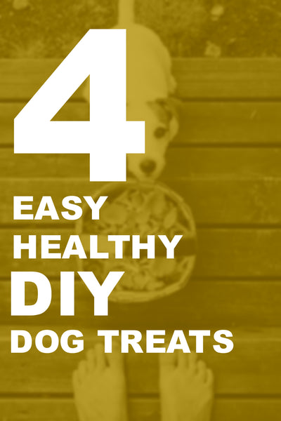 4 Easy Healthy DIY Dog Treats