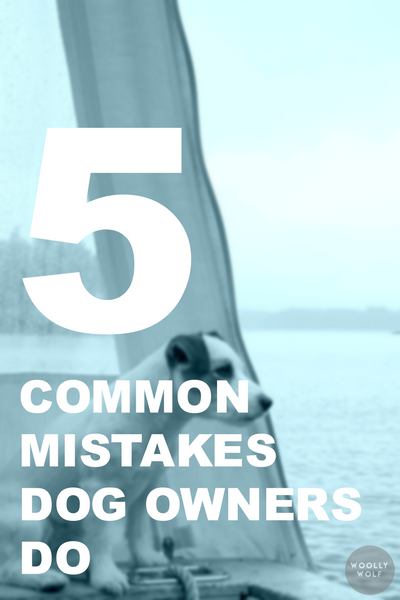5 Common Mistakes Dog Owners Make