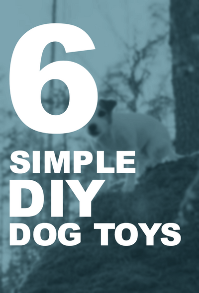6 Simple DIY Dog Toys