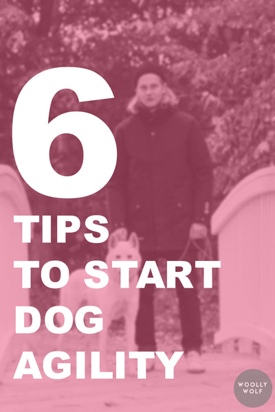 6 Tips to Start Dog Agility