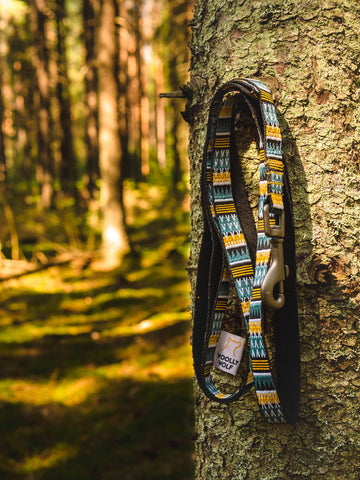 Woods Leash