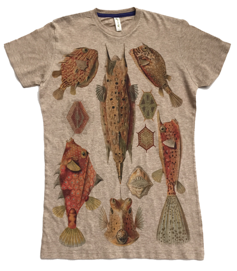 Fish - Asheville Apparel