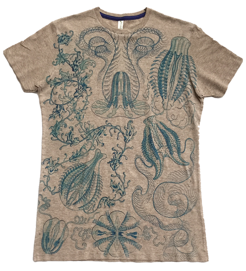 Jellyfish - Asheville Apparel