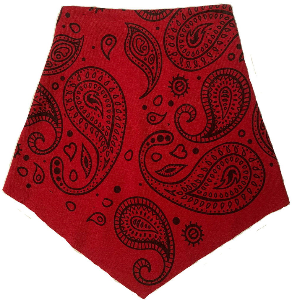 Adult | Organic Cotton | Filter Infinity Bandana | Paisley | Red | USA Made