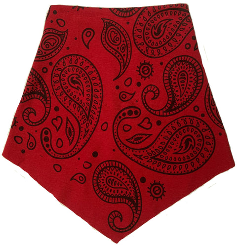 Paisley Red Filter Infinity Bandana