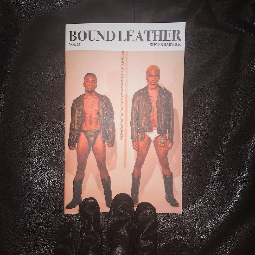 Bound Leather Volume 15