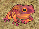 Fabulous Frogs Prints