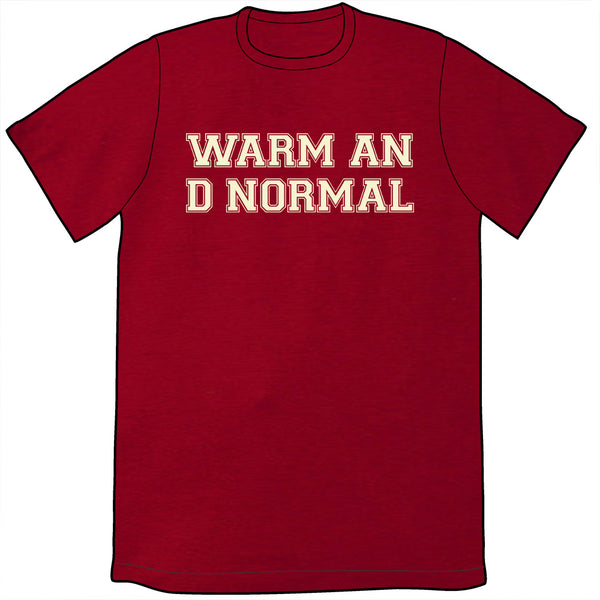 Warm And Normal Shirt