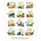 Bird Sound Mnemonics Print (Eastern)