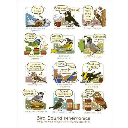 Birding Is My Favorite Video Game Print
