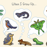 When I Grow Up Print