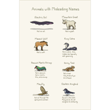 Animals With Misleading Names Print