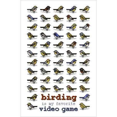 Cool Birds Card Set
